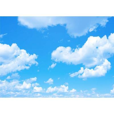 DANIU 7X5FT cielo azul